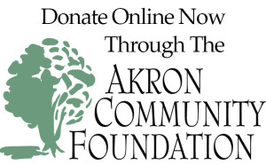 AkronCommunityFoundation_Donate Online