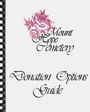 Donation Options Guide
